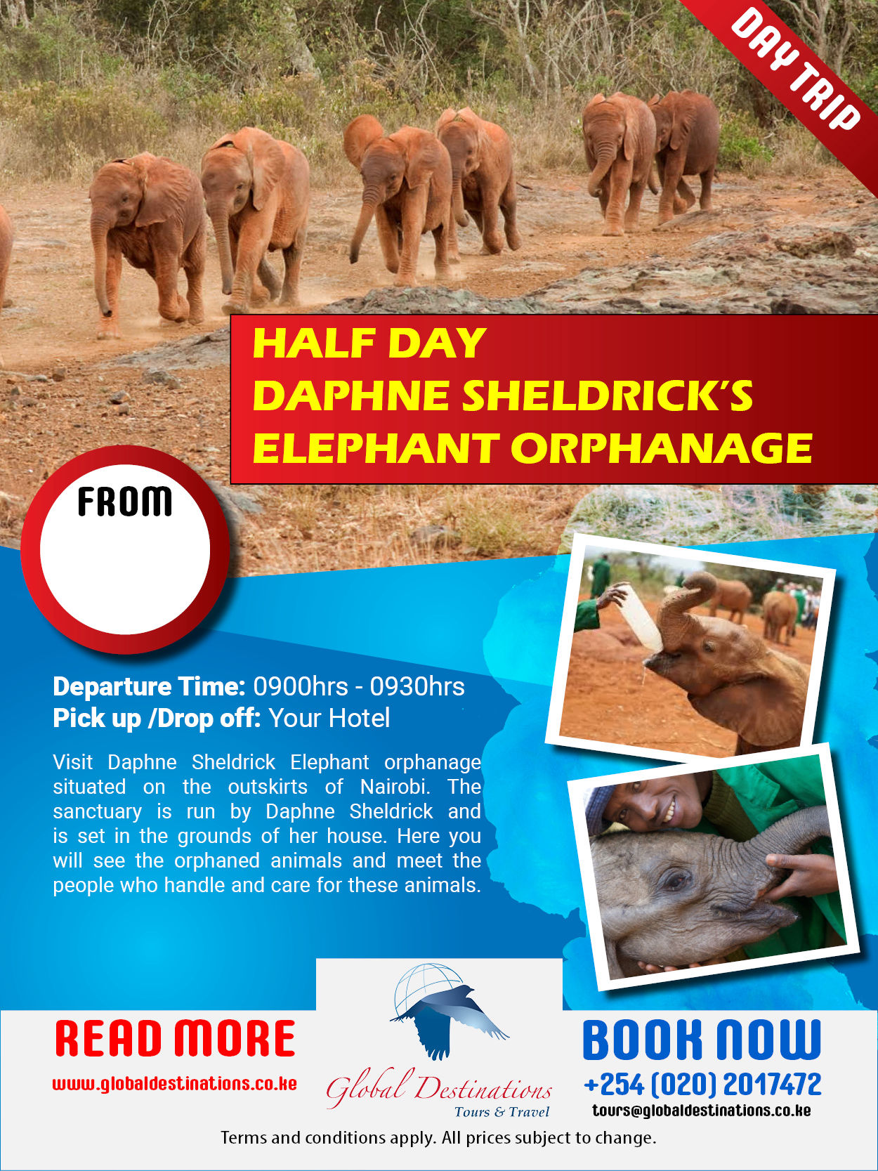 Half Day Daphne Sheldricks Elephant Orphanage